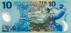 The NZ Blue Duck is on our $10 note